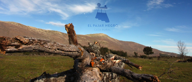 casa rural pico ocejon ruta majaelrayo alquiler